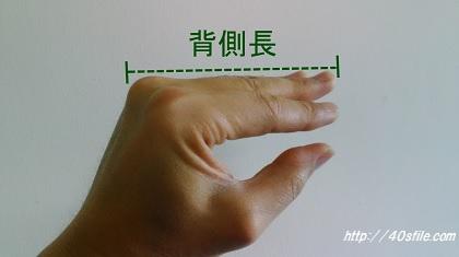 指の長さ、背側長